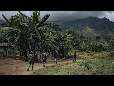 On the trail of the DR Congo's dreaded ADF militia