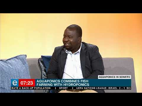 Aquaponics facility launched in Soweto