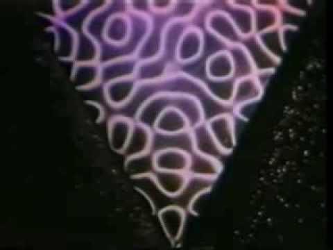David August - Epikur - Epikur EP (Official Video) music