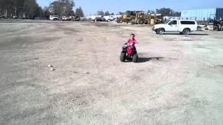 Kazuma 50cc Meerkat Kids Quad For Sale