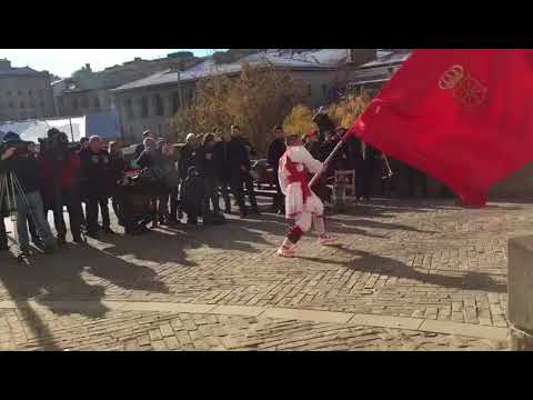 Nafarroako erresumari gorazarrea