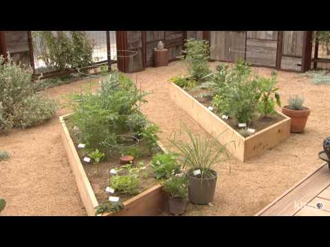 Front Yard Courtyard Food, Art, Wildlife |Austin Neal |Central Texas Gardener