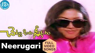 Chettu Kinda Pleader Movie Neerugari Pari Video Song  Rajendra Prasad  Urvashi  Ilaiyaraaja
