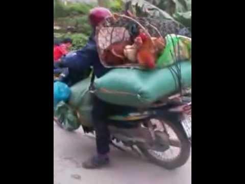 nữ sinh tại Trung Tâm đánh nhau hlls