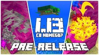 Minecraft 1.13: [PRE-8] Co Nowego? Nowe Wachlarze Koralowca! Otwarte Wachlarze!