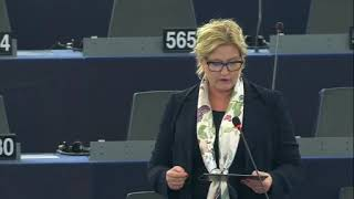 Karin Karlsbro 26 Nov 2019 plenary speech on the Airbus dispute