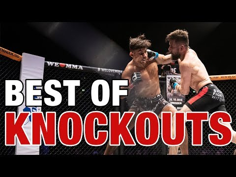 We Love MMA - BEST OF KNOCKOUTS