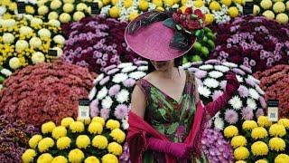 Лучшие сады. Модные тенденции. 2015 Челси. Грандиозное шоу садов и цветов.