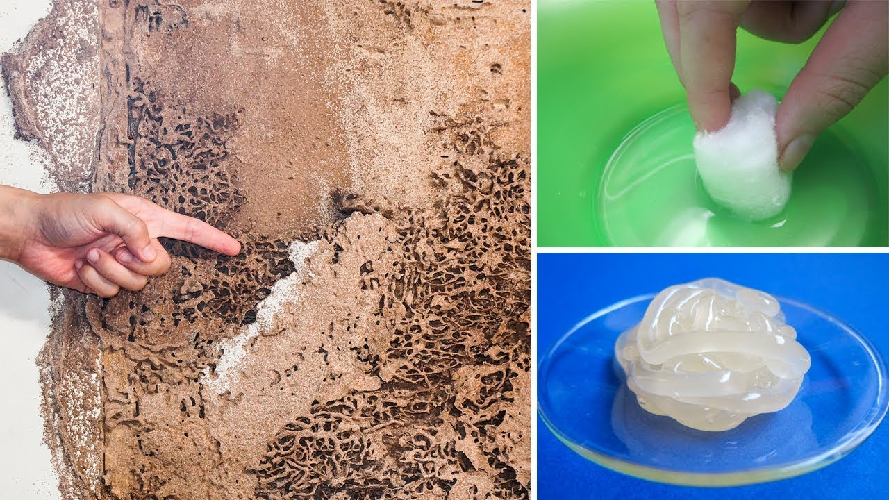 How To Kill Termites And Get Rid Of Them Forever. Natural Cures