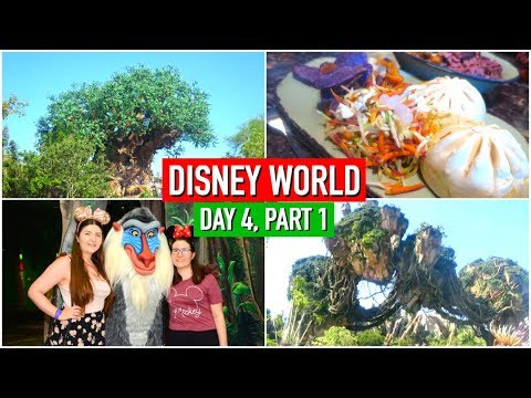 Download Youtube: DISNEY WORLD VLOGS 2017 | DAY 4, PART 1 | FIRST TIME IN PANDORA