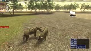 Roblox: Wild Savannah Hyena Pair Documentary (with text)