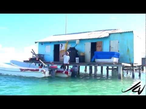 banco-chinchorro-mexico-adventure-travel---youtube