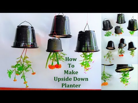 How To Make Upside Down Planter Or Sky Planter At Home | Best Garden Ideas // GREEN PLANTS