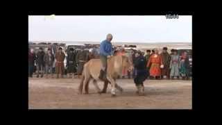 Aduuchin - 2014 Sukhbaatar Aimag Uulbayan Sum