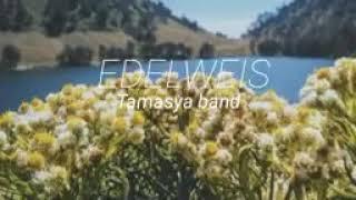 Lagu Edelwies