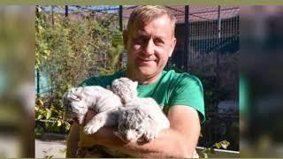 Директор парка львов «Тайган» Зубков арестован в зале суда