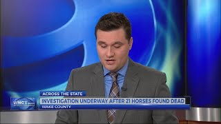 21 horses found dead in Wake Co.