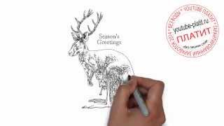 Как нарисовать карандашом кенгуру поэтапно за 23 секунды