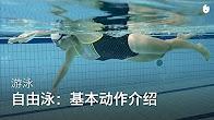 sikana视频:学习自由泳 thumbnail