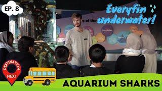 Destination Next | Episode 8 | Aquarium Sharks