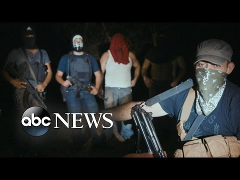 'Cartel Land' Explores Deadly Consequences of Illegal Drug Trade