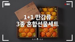 고급선물세트 한라봉, 천혜향, 레드향 3종 혼합세트