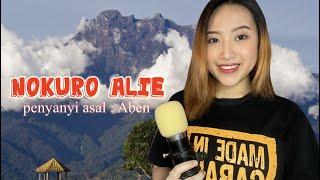 Nokuro Alie - Aben ( cover by Via Edward )