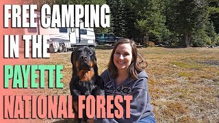 FREE Camping in the Payette National Forest Near McCall Idaho at Goose Lake - Campsite Review