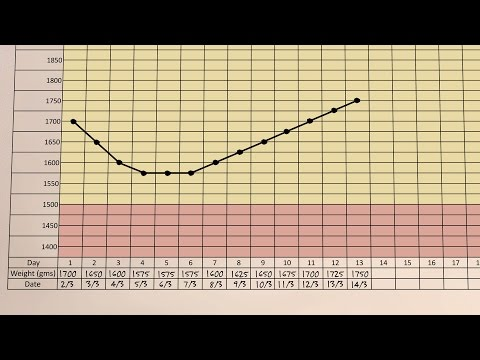 A Small Baby's Growth Chart - Small Baby Series