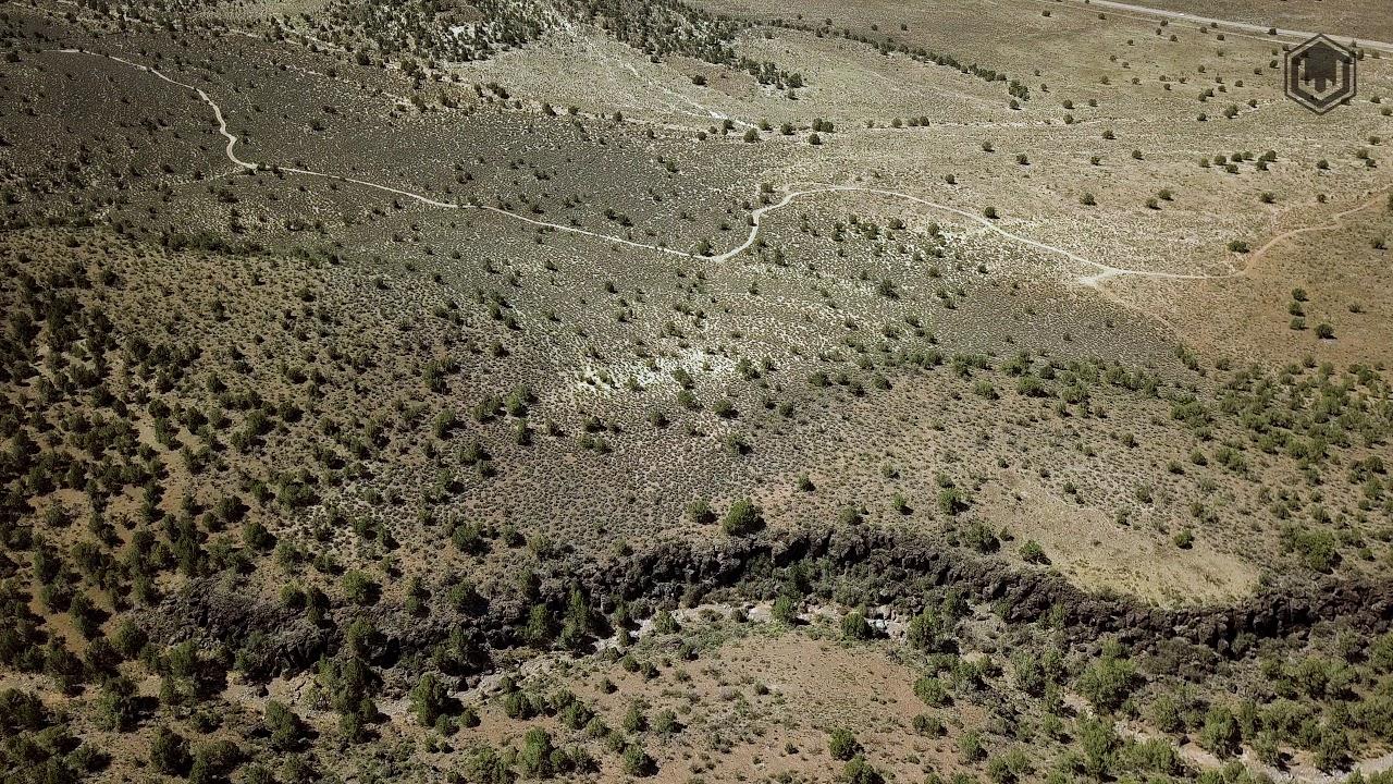 Pine Valley (30) | Utah Mule Deer - YouTube