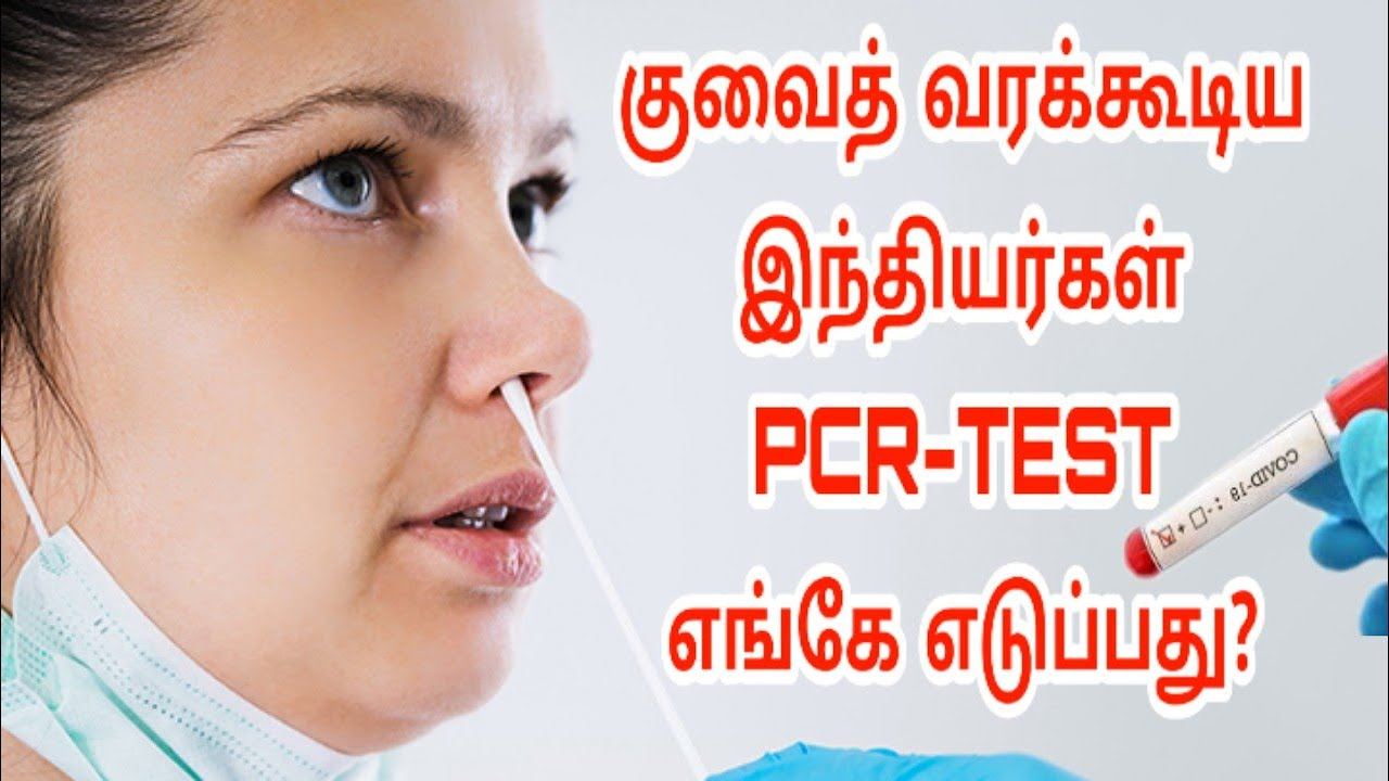 Kuwait Tamil updates   PCR-Test   Lifestyle Tamil   latest Kuwait Tamil breaking news   Kuwait news