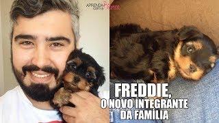 FREDDIE, O NOVO INTEGRANTE DA FAMÍLIA!