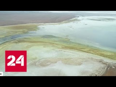 Выброс ядовитых веществ в Крыму спровоцировала Украина - Россия 24