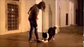 Dog Dancing Greece (anna And Bella)