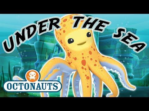 Octonauts - Under The Sea | Cartoons for Kids | Underwater Sea Education