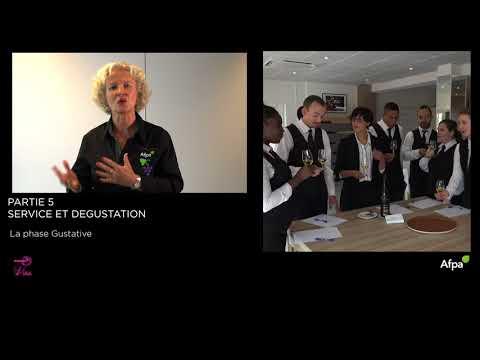 UA5 - Vidéo 6 - Dégustation du vin - La phase gustative