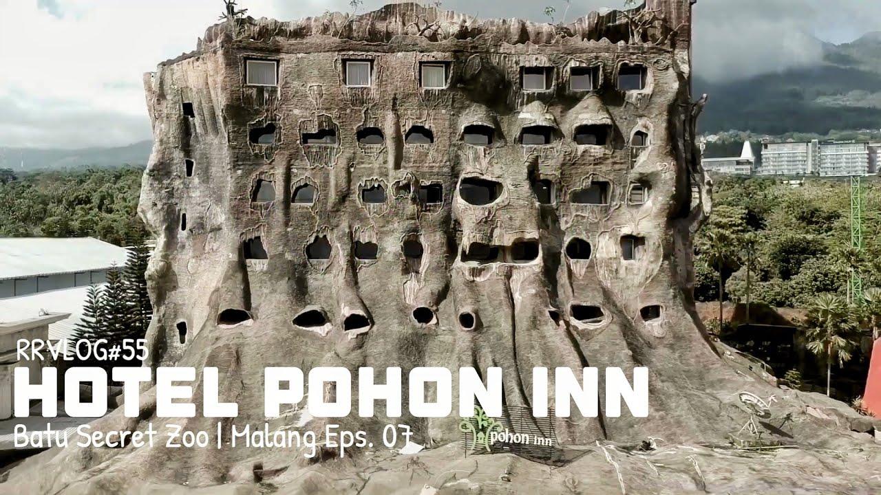 rrvlog 55 malang hotel pohon inn jatim park 2 youtube rh youtube com