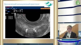 Габлия М Ю - Унификация протоколов ультразвуковых исследований предстательной железы