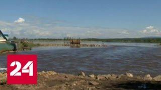В Забайкалье начали вывозить трупы животных, погибших во время наводнения - Россия 24