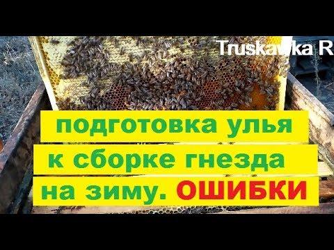 Ошибки при формировании гнезда пчёл на зиму. Куда ставить рамки с пергой.