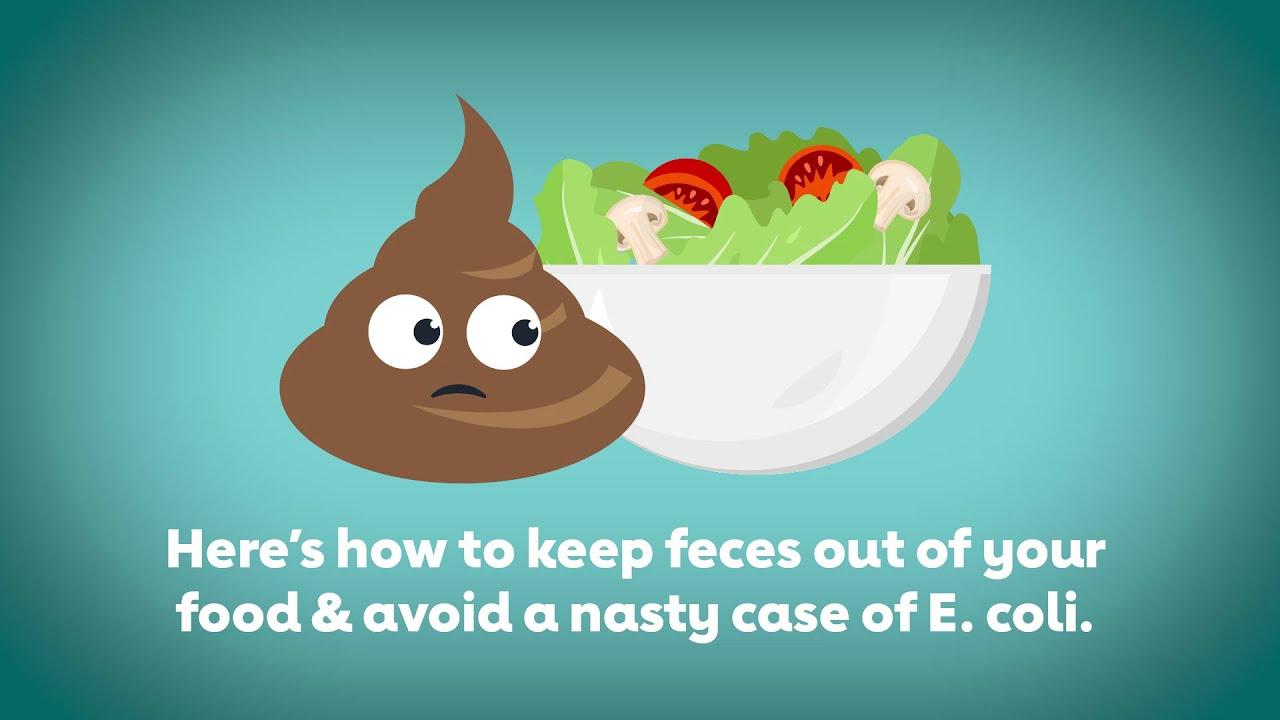 a fertőzés megelőzése széles galandféreg milyen élelmiszerektől félnek a férgek