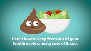 Food safety: Avoiding E. coli