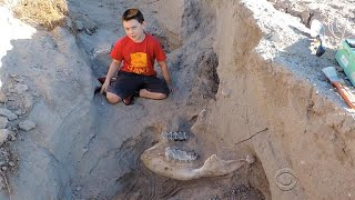 10-year-old boy stumbles across million-year-old fossil