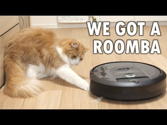 So we got a Roomba