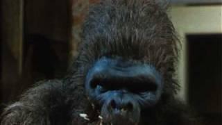 SCHLOCK: DAS BANANENMONSTER (1973) - Deutscher Trailer