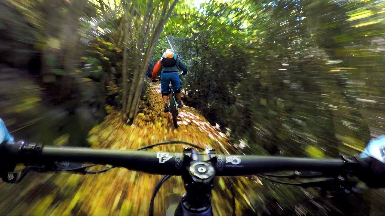 This trail lived up to its name   Mountain Biking the