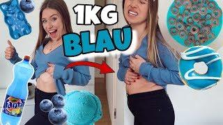 Schaffe ich es 1 Kg BLAUE Lebensmittel zu essen? 😳 | Bibi