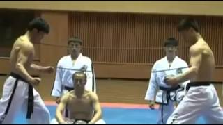 Crazy martial artists