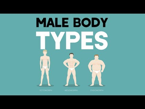 Male Body Types: Different Somatotypes