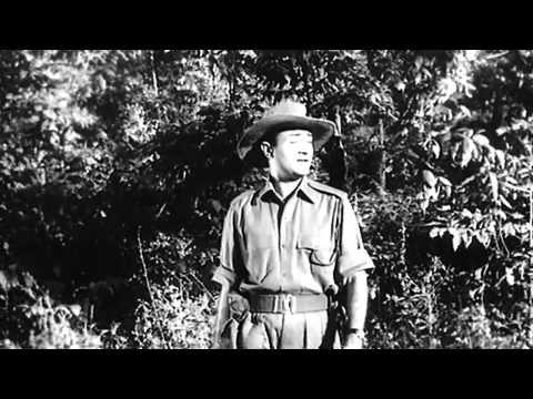 Main Zindagi Ka Saath Nibhaata - Hum Dono - Mohd Rafi - Dev Anand - HD